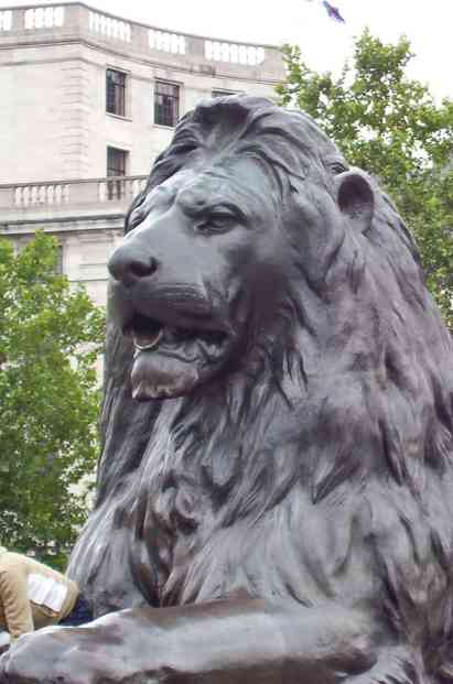 An image of one of the Barbary Lions at the base of Nelson's Column in London, England.