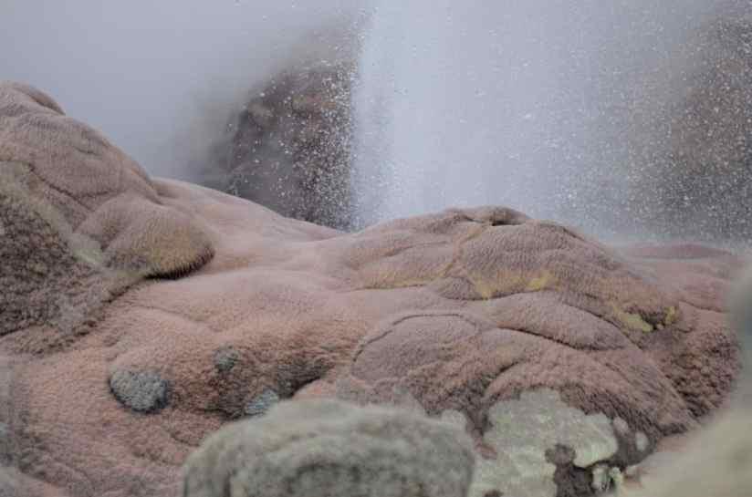 Image of venting hole at Te Puia Geothermal Preserve, Rotorua, New Zealand