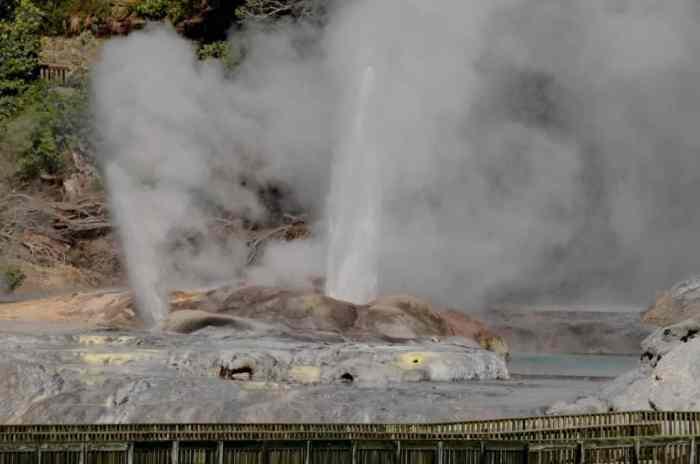 Image of Pohutu Geyser at Te Puia Geothermal Preserve, Rotorua, New Zealand