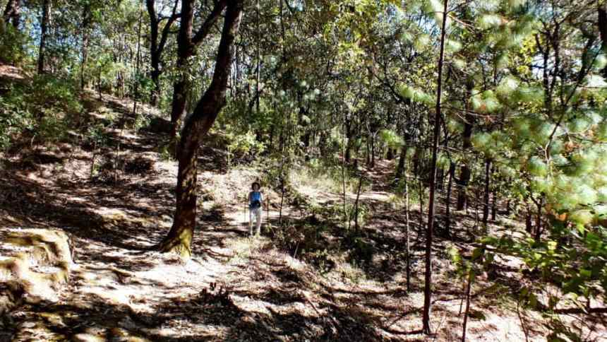 Hiking trail at Cerro de San Juan Ecological Reserve near Tepic, Mexico.