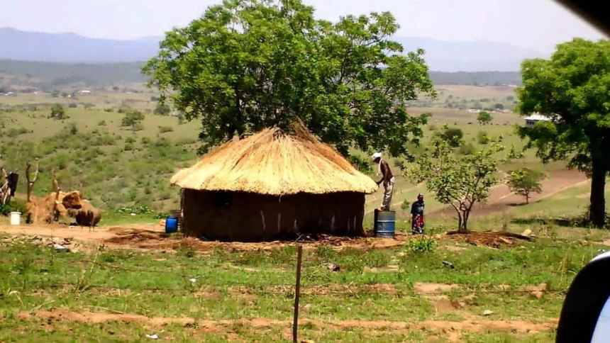 a man re-thatching his dwelling in swaziland, africa
