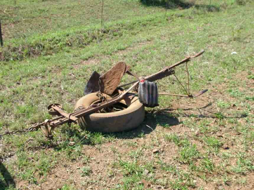 a primitive plough in swaziland, africa