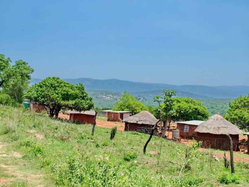 a collection of thatched huts in swaziland, africa