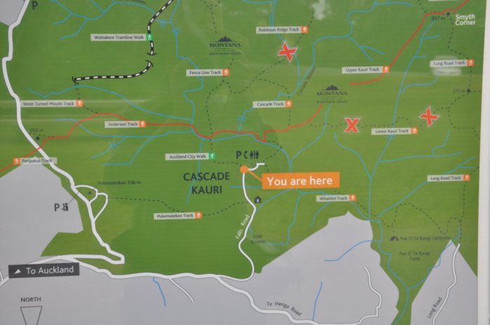 trail map, ark in the park, waitakere ranges regional park, north island, new zealand