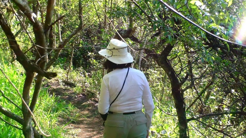 jean on the mbhombe self-guided trail at hilltop camp, hluhluwe-imfolozi, south africa