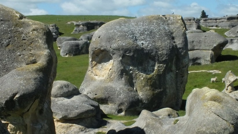 an elephant rock that resembles a skull, duntroon, new zealand