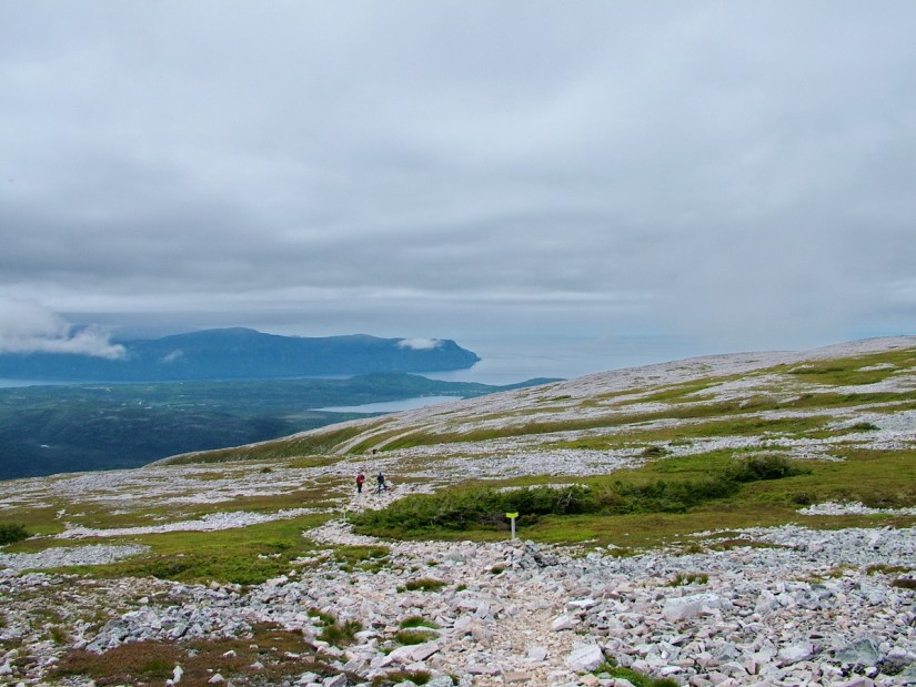the summit of gros morne mountain, newfoundland, canada