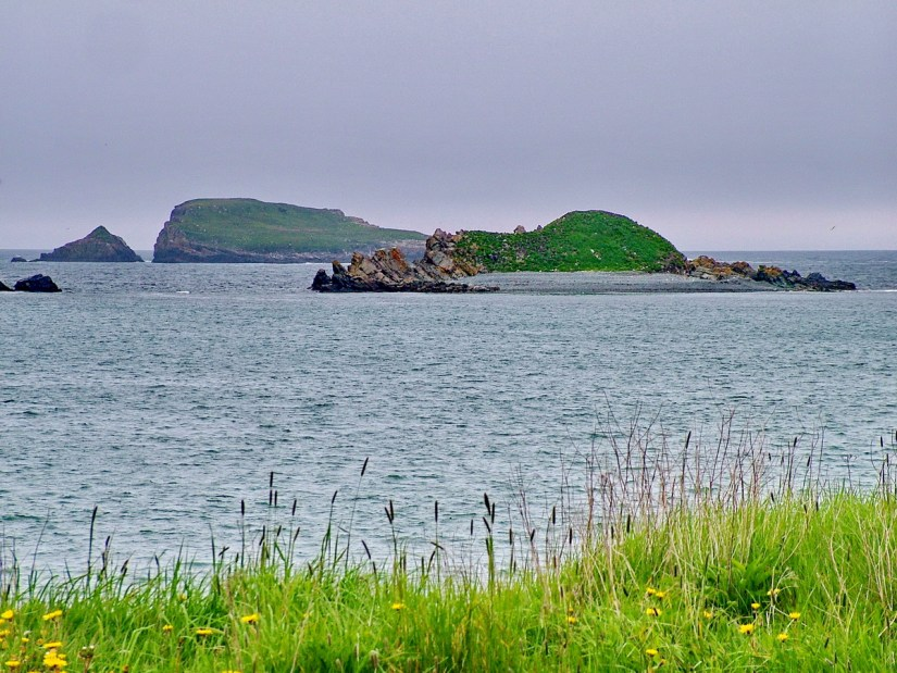 the islands off the colony of avalon, newfoundland and labrador