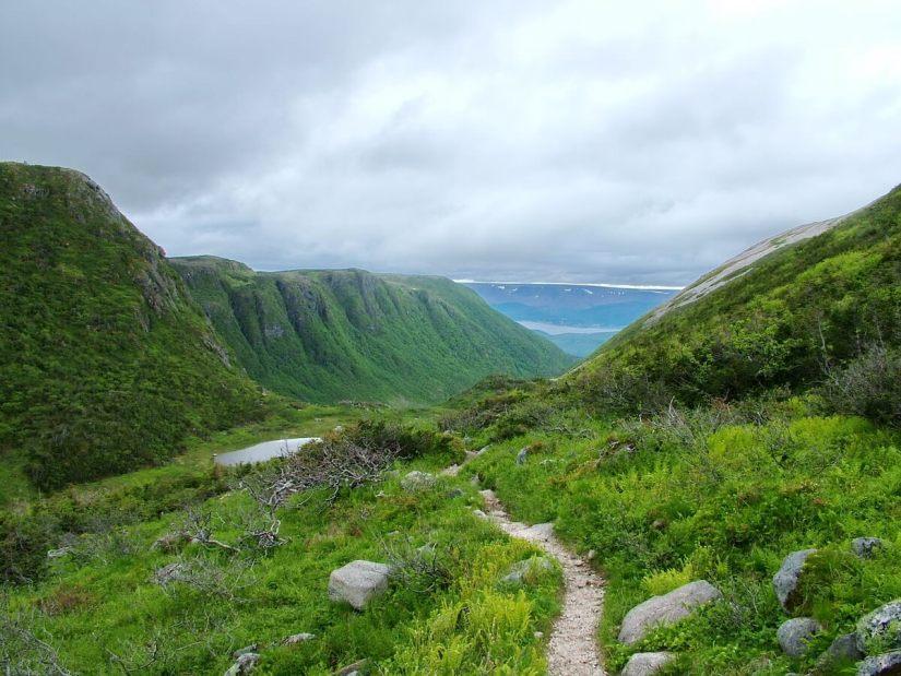 ferry gulch, gros morne mountain, newfoundland, canada