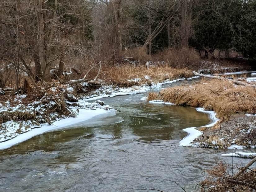 little rouge creek, rouge national urban park, toronto, ontario
