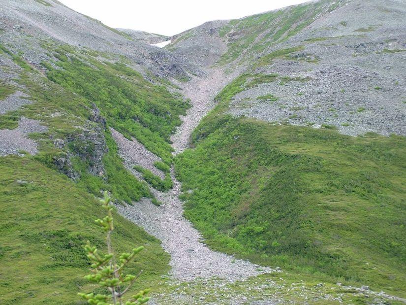 the gully, gros morne mountain, newfoundland, canada