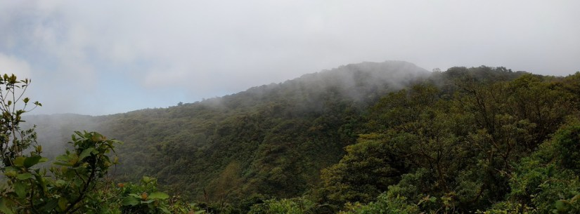 view from the continental divide, monteverde cloud forest preserve, costa rica