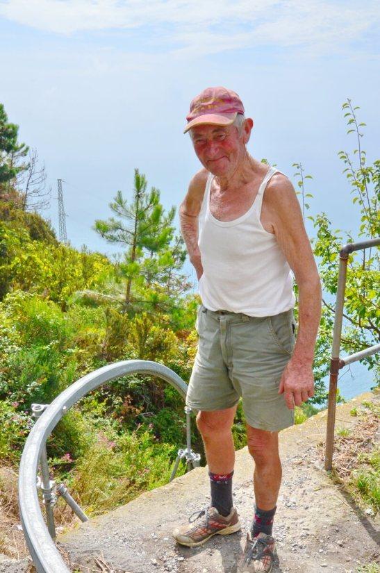 vineyard worker, cinque terre, italy