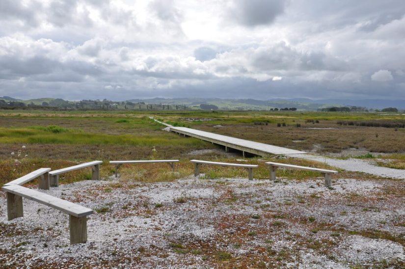 a boardwalk across the chenier plain, Pukorokoro Miranda Shorebird Centre, north island, new zealand