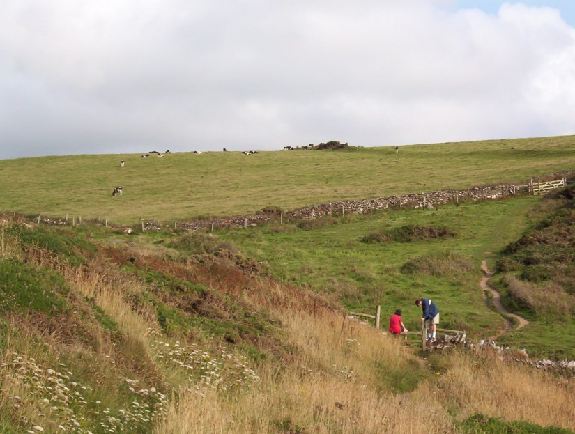hikers in the paddocks near tintagel, cornwall, england
