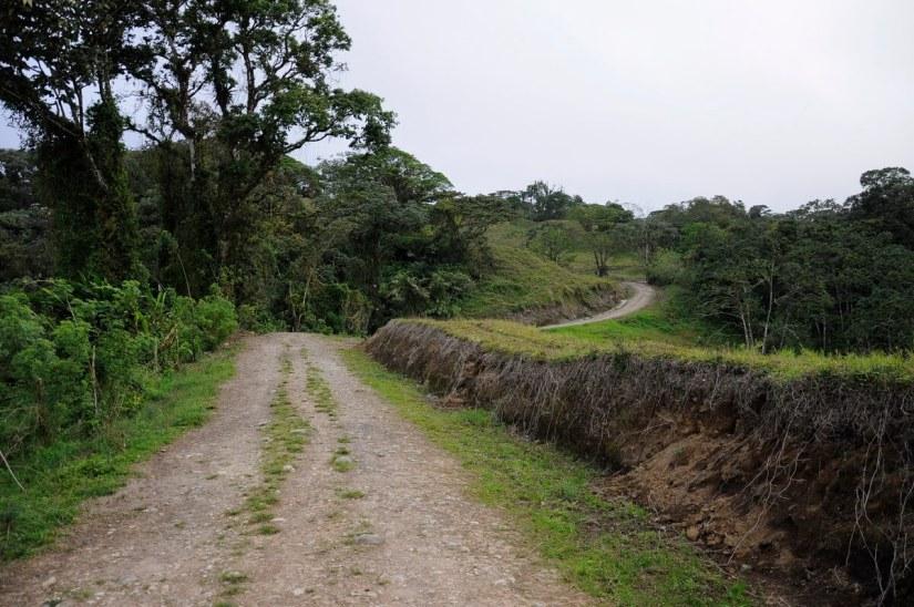 a backroad trail, mistico arenal hanging bridges park, la fortuna, costa rica
