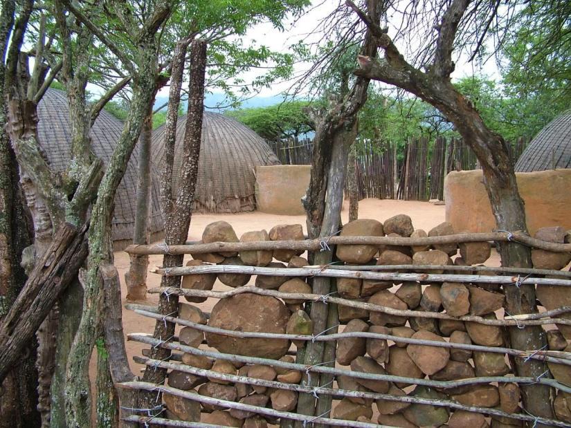 kraal palisades and fence, shakaland, kwazulu-natal, south africa