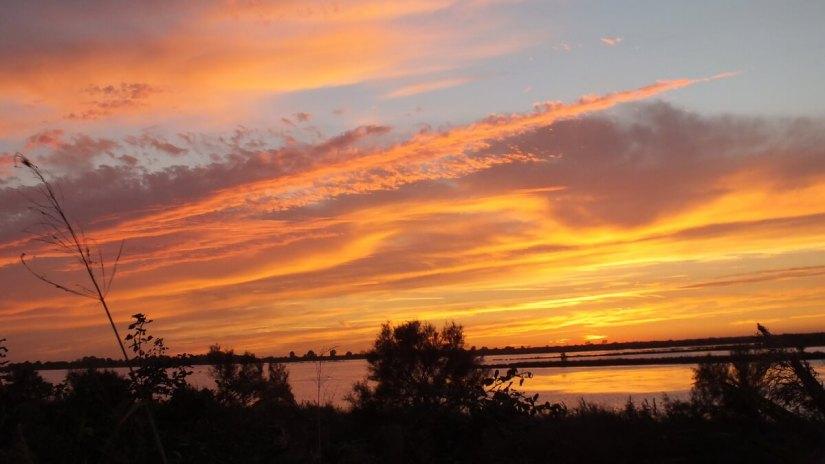 a blazing orange sky, Parco Regionale Veneto del Delta del Po (The Regional Park of the Po River Delta), italy