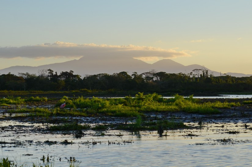 mudflats and mountains, cano negro lake, cano negro wildlife refuge, costa rica