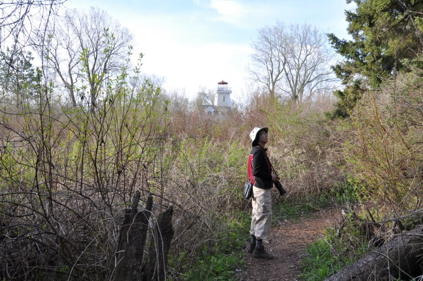 jean in lighthouse woods, the old cut, long point, ontario