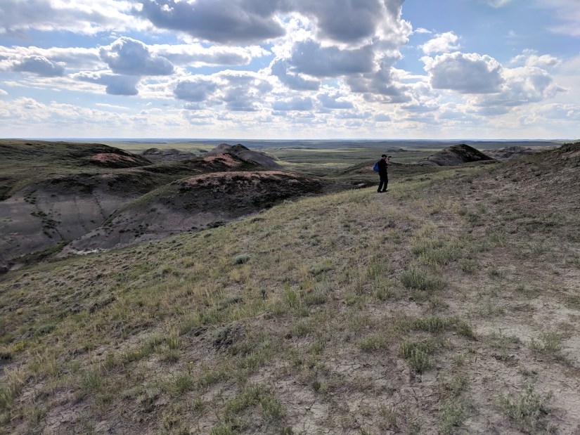 bob in the badlands, valley of 1000 devils route, grasslands national park east block, saskatchewan