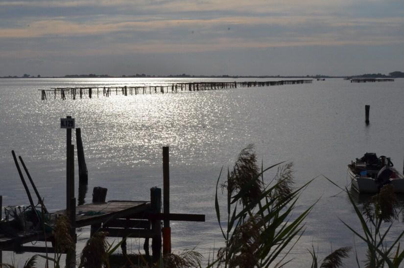 a fishing lagoon at dusk, parco regionale veneto del delta del po, po river delta, italy