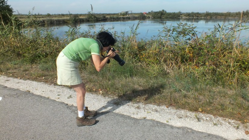 jean taking a photo, parco regionale veneto del delta del po, po river delta, italy