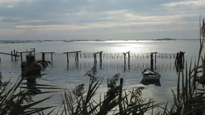 a fishing lagoon, fishing valley, parco regionale veneto del delta del po, po river delta, italy