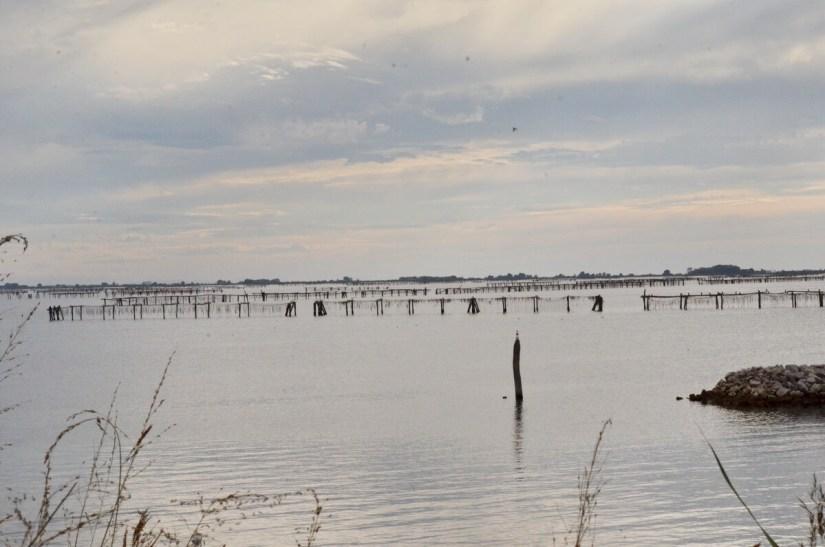lavorieri, fishing lagoon, parco regionale veneto del delta del po, po river delta, italy