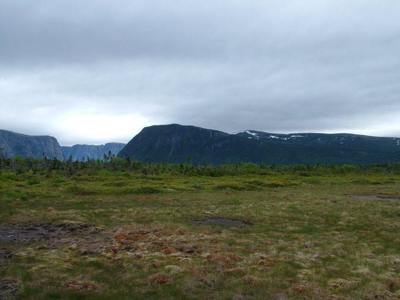 landscape near western brook pond, gros morne national park, newfoundland, canada
