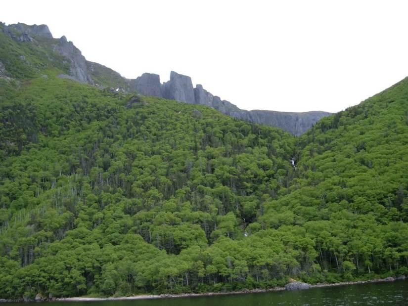forested cliffs, western brook pond, gros morne national park, newfoundland, canada