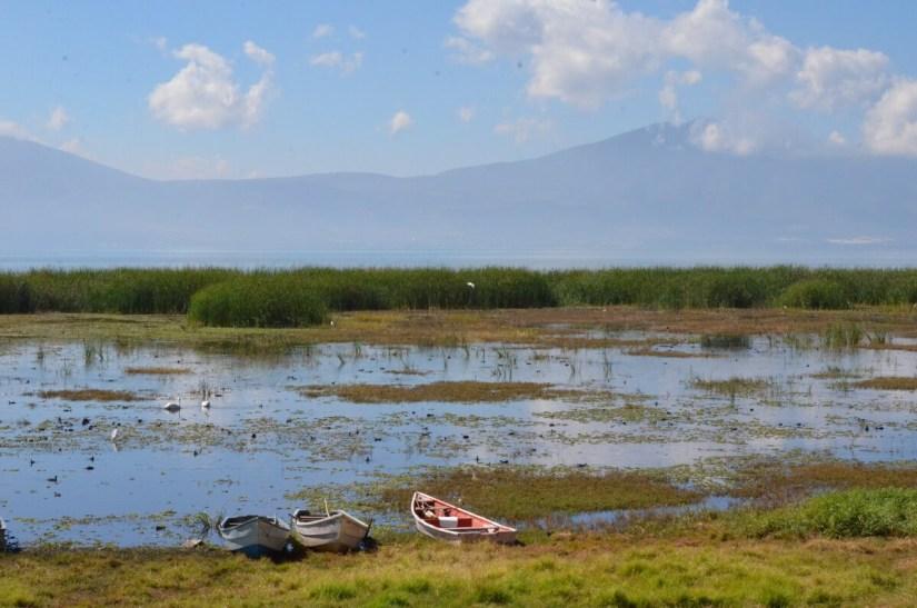 mudflats, lake chapala, mexico