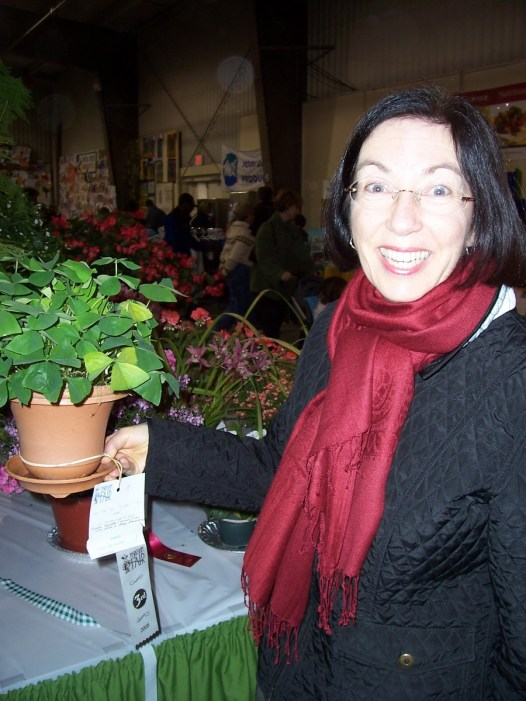 a winner in the horticultural competition, markham fair, markham, ontario, 2008