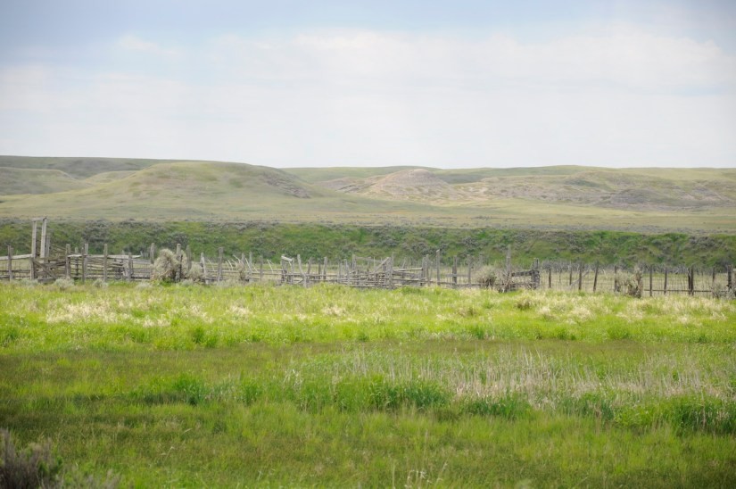 corral remains, grasslands national park, saskatchewan