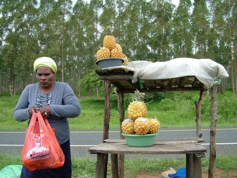 roadside vendor, KwaZulu-Natal, South Africa