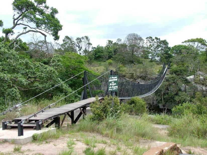 suspension bridge, oribi gorge, south africa
