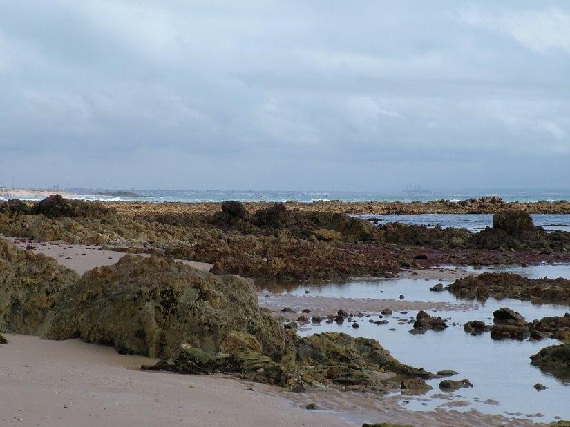 seashore, indian ocean, port elizabeth, south africa