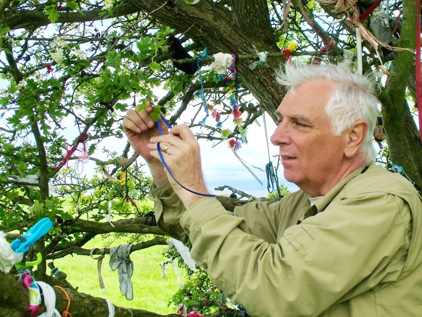 bab at the fairy tree, hill of tara, county meath, ireland