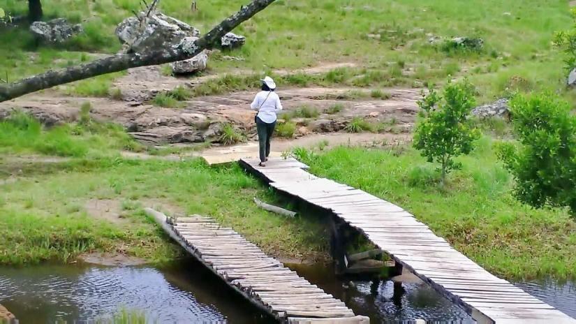 footbridge above lehr's fall, oribi gorge, south africa