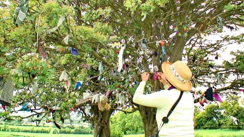 jean at the fairy tree of tara, county meath, ireland