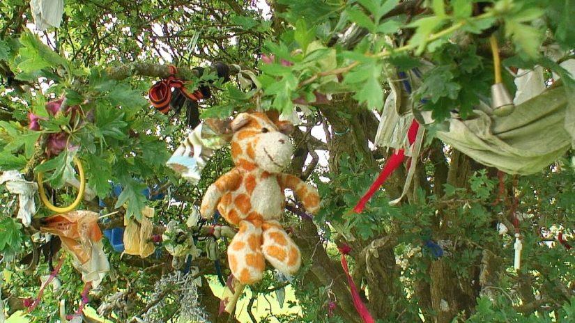 clotties, offerings, wishing tree, hill of tara, ireland