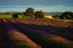 Custom  Itinerary in Provence