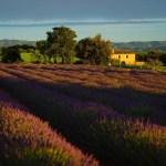 Roteiro Sob Medida na Provence