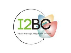 logo-i2bc