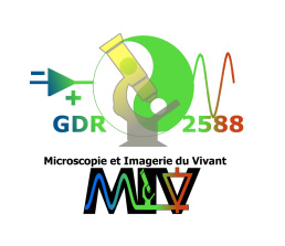 logo GDR-MIV