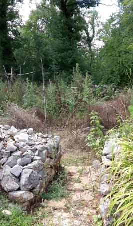 Veg patch entrance