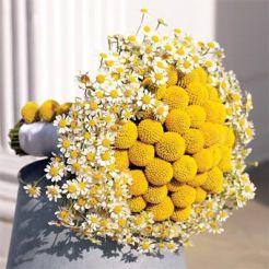 bouquetjaune3