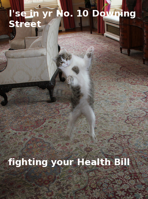 Larry protesting Health Bill