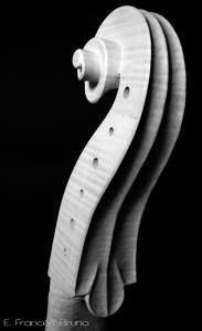 voluta Viola tenor amati 1600 eduardo frances bruno luthier