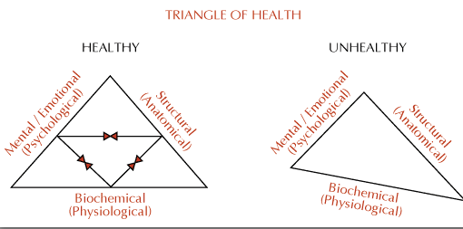 triangle-of-health
